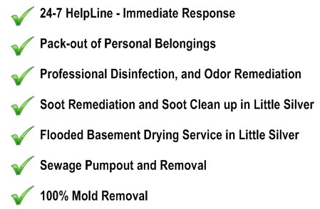 Flood Clean Up Little Silver NJ Water Removal Service