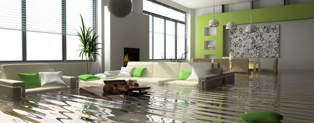 Flood Cleanup Union City - Water Damage & Mould Control Services
