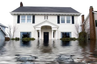 Flood Cleanup Princeton Junction | Water Removal
