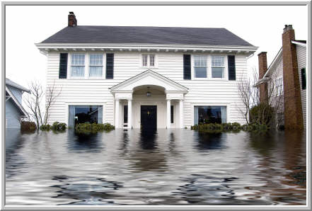 Flood Clean-Up Haddon - Basement Water & Molds Abatement Service