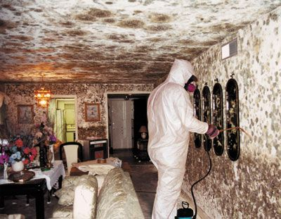 Flood Clean-up Leonia - Basement Mould Abatement & Water Damage Restoration Services