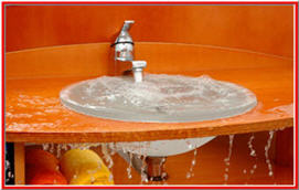 Leaky Bathroom Water Damage & Mold - Holmes Inspection - NY- NJ Cleanup Service