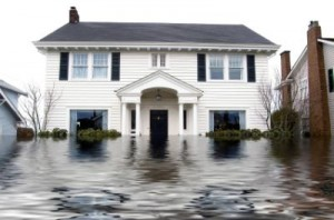 Mold and Water Damage Claims in Middlesex County, New Jersey