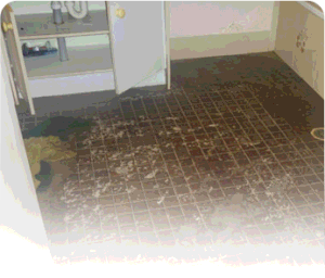 basement cleaning services in central jersey 300x2561 basement water